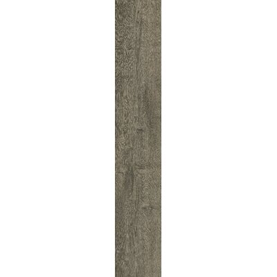 Bio Plank 8 x 48 Porcelain Wood Tile in Fume