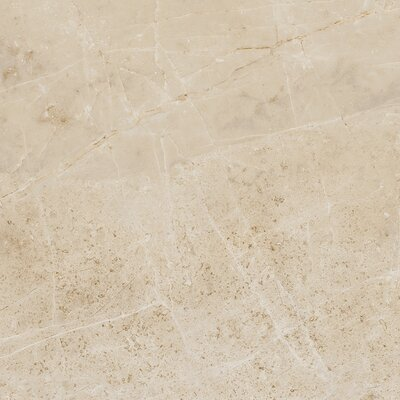 Emperor 12 x 12 Porcelain Field Tile in Caesar