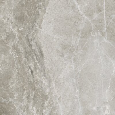 Emperor 12 x 12 Porcelain Field Tile in Alexander