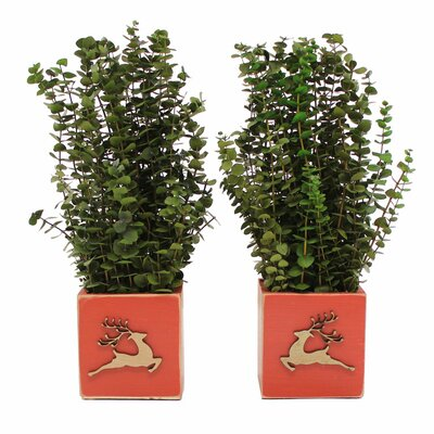 Holiday Dancer Desk Top Plant in Planter