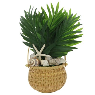 Floor Plant in Basket