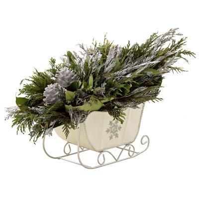 Desk Top Plant in Decorative Vase