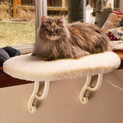 9 Kitty Sill Cat Perch Heat: Unheated, Color: Tan Kitty Print