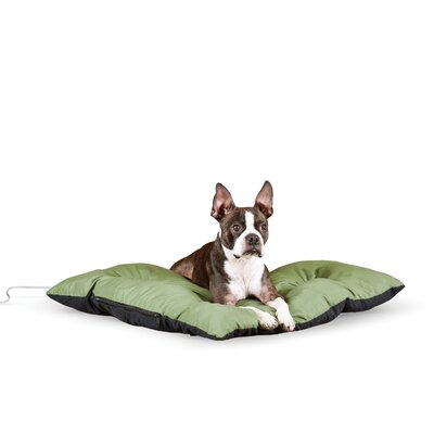 Thermo-Cushion Dog Bed Size: Small - 19 L x 24 W