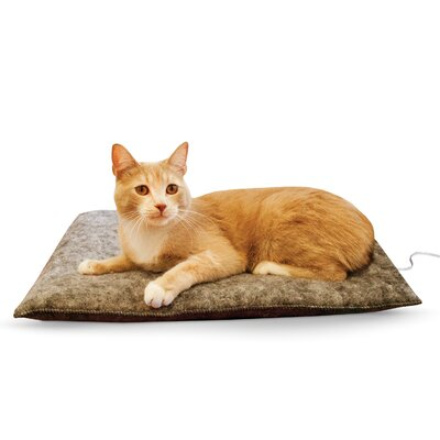 Amazin Thermo-Kitty Pad