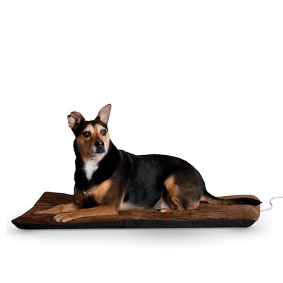 Ortho Heated Dog Pad with Stay Put Bottom Size: Extra Large (43 L x 33 W), Color: Chocolate