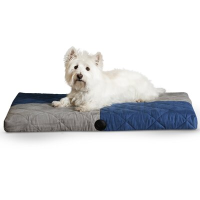 Quilted Memory Dog Dream Pad Size: Large, Color: Blue / Gray