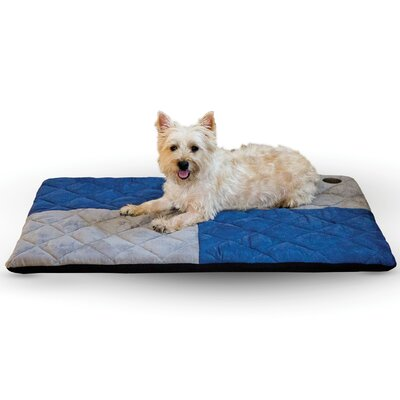 Quilted Memory Dog Dream Bed Size: Large, Color: Blue / Gray