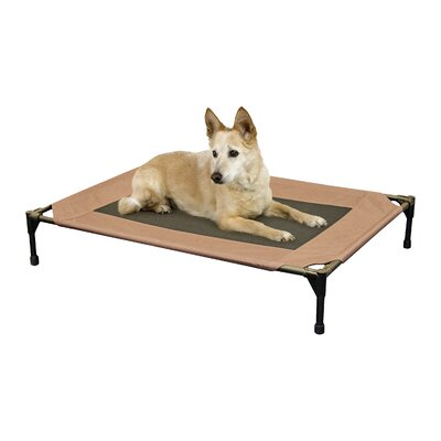 Elevated Dog Cot Size: Medium (32 H x 25 W)