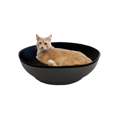 Cat Mod Half-Pod Color: Gray / Black