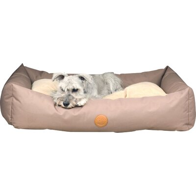 Travel / SUV Dog Pillow Size: Small (36 L x 24 W), Color: Tan