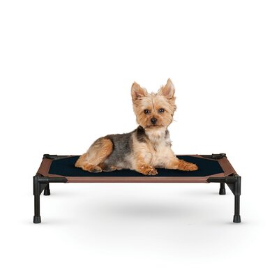 Original Cot Small Dog Bed