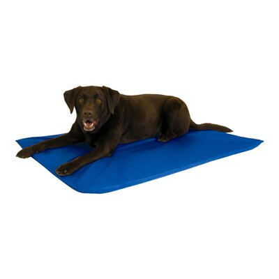 Cool Pet Mat Size: Large (44 L x 32 W)