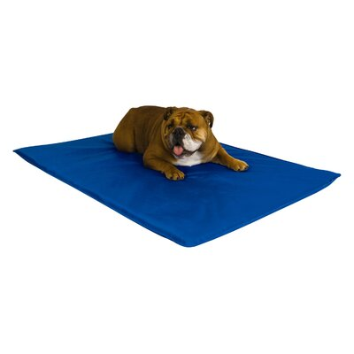 Cool Pet Mat Size: Medium (32 L x 22 W)