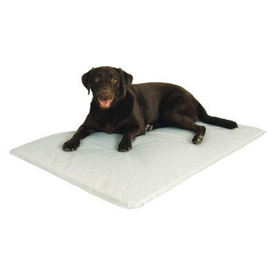 Cool Bed Pet Mat Size: Large (44 L x 21 W)