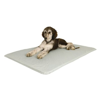 Cool Bed Pet Mat Size: Medium (32 L x 22 W)