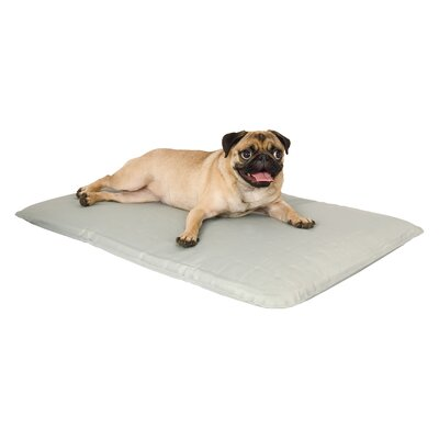 Cool Bed Pet Mat Size: Small (24 L x 17 W)