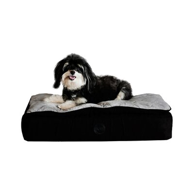 Feather Top Ortho Dog Bed Color: Black / Gray, Size: Large