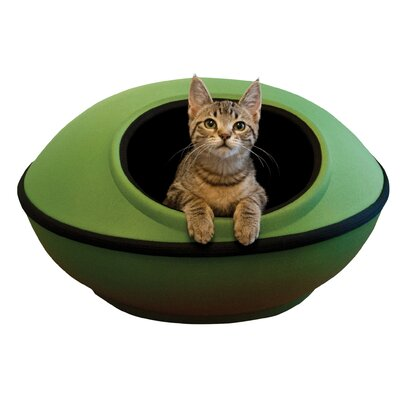Cat Mod Dream Pod Color: Green / Black