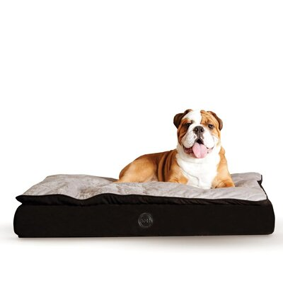 Feather Top Ortho Dog Bed Color: Black / Gray, Size: Medium