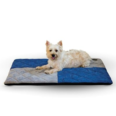 Quilted Memory Dog Dream Bed Size: Medium, Color: Blue / Gray