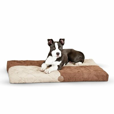 Quilted Memory Dog Dream Bed Size: Small, Color: Chocolate / Tan
