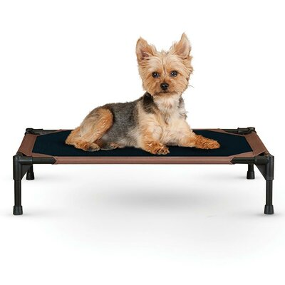Dog Cot Size: Small (22