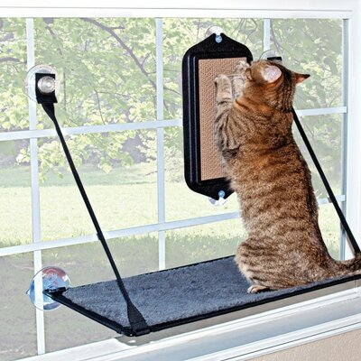 EZ Mount Cat Scratcher Board