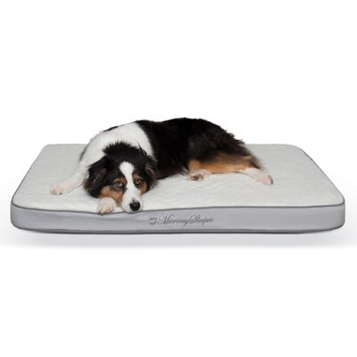 Memory Sleeper Dog Bed Size: Large
