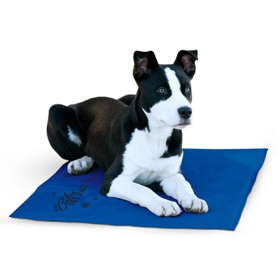 Coolin Pet Pad Size: X-Large
