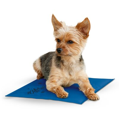 Coolin Pet Pad Size: Small