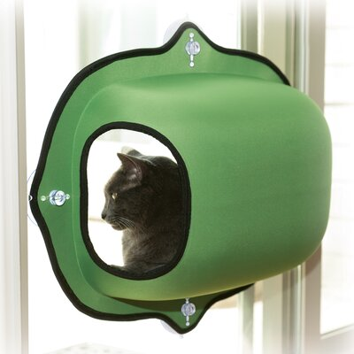 EZ Mount Window Cat House Color: Green