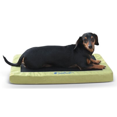 Comfy N Dry Indoor / Outdoor Dog Bed Color: Lime Green, Size: Small