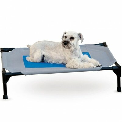 Coolin Dog Bed Cot Cover Size: Medium