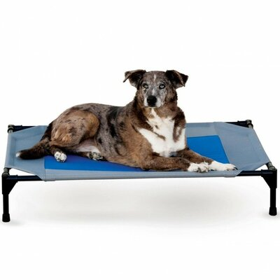 Coolin Dog Bed Cot Cover Size: Large