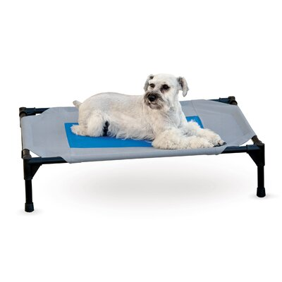 Coolin Dog Bed Size: Medium