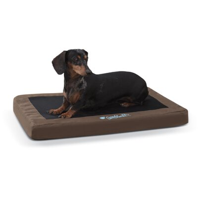 Comfy N Dry Indoor / Outdoor Dog Bed Size: Large, Color: Chocolate