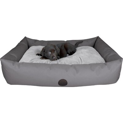 Travel / SUV Dog Pillow Size: Large (48 L x 30 W), Color: Gray