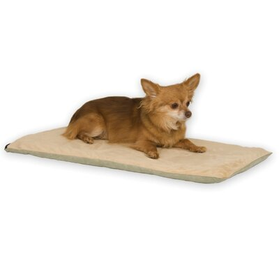 Heated Dog Mat Color: Sage