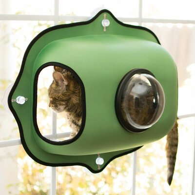EZ Mount Window Bubble Cat Pod Color: Green