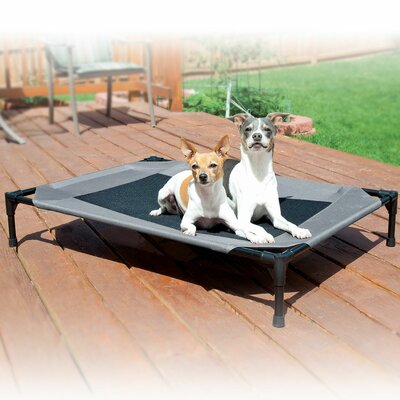 Original Pet Cot Size: Large (42 W x 30 D x 7 H)