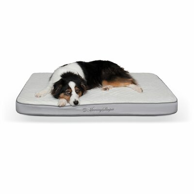 Memory Sleeper Pet Mat Size: Medium (35 W x 23 D x 3.75  H)