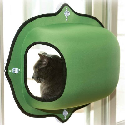 EZ Mount Window Pod Kitty Sill Color: Green