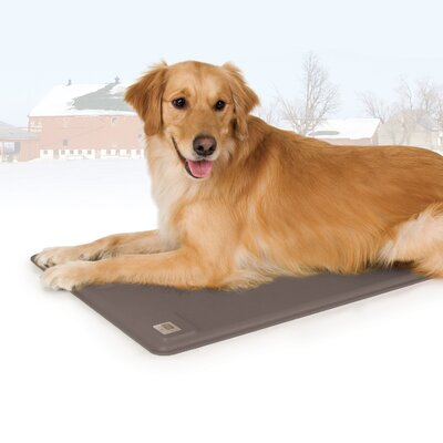 Deluxe Lectro-Kennel Crate Dog Pad Size: Large (28.5 L x 22.5 W)