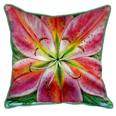 Lily Indoor/Outdoor Throw Pillow Size: Small