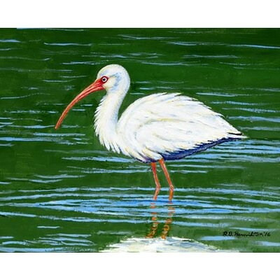 Ibis Doormat Rug Size: Rectangle 26 x 42
