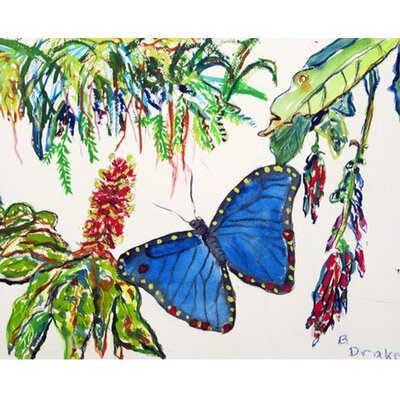 Morpho Doormat Mat Size: Rectangle 26 x 42