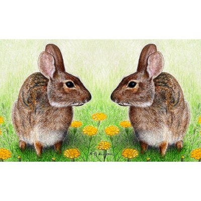 Garden Rabbits Doormat Size: Rectangle 18 x 26