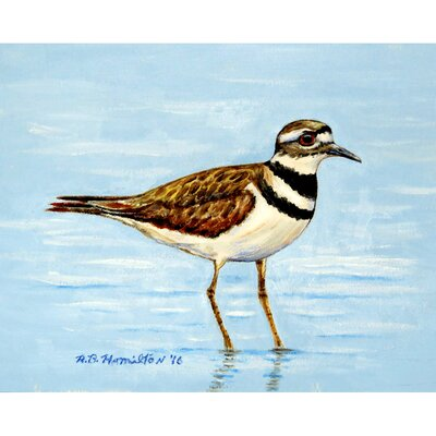 Killdeer Doormat Mat Size: Rectangle 16 x 22