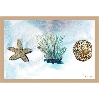 Coastal Coral Doormat Size: 18 H x 26 W